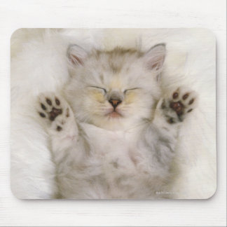 Kitten Sleeping on a White Fluffy Carpet, High Mouse Pad