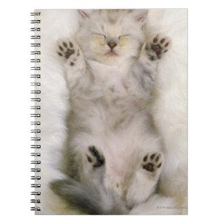 Kitten Sleeping on a White Fluffy Carpet, High Notebook