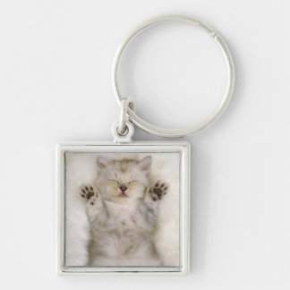 Kitten Sleeping on a White Fluffy Carpet, High Silver-Colored Square Keychain
