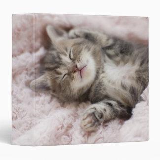 Kitten Sleeping on Towel Binder