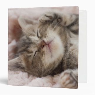 Kitten Sleeping On Towel Binder