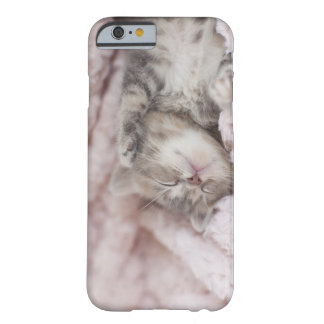 Kitten Sleeping on Towel Barely There iPhone 6 Case