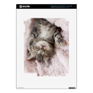 Kitten Sleeping on Towel iPad 3 Decals