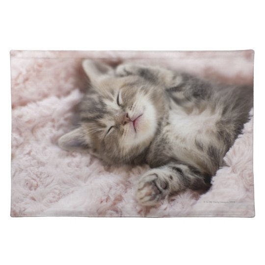 Kitten Sleeping on Towel Placemat