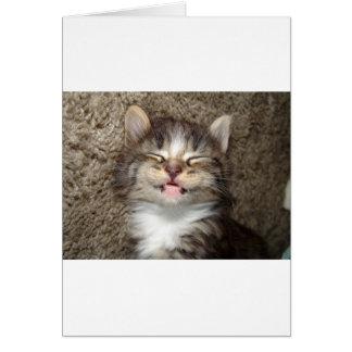 Kitten Smile Greeting Card