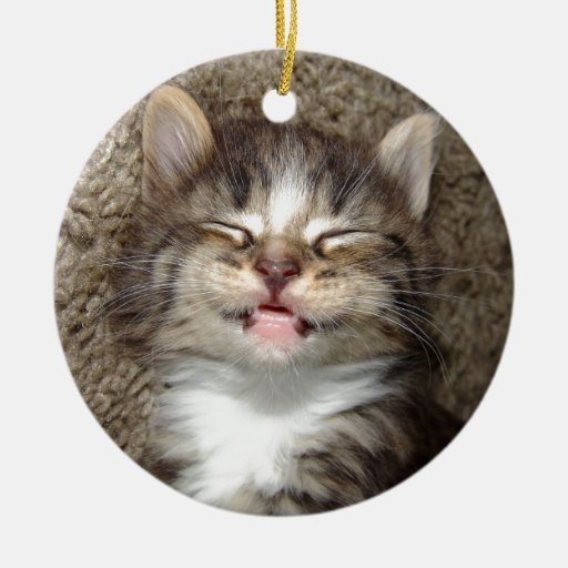 Kitten Smile Double-Sided Ceramic Round Christmas Ornament