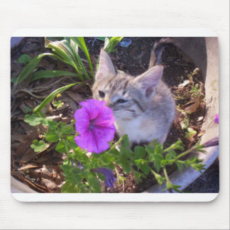 Kitten sniffing flower mouse pad