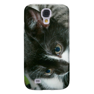 Kitten Speck iPhone 3 Case