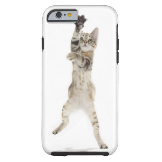 Kitten standing on back paws tough iPhone 6 case
