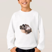 kitten sweatshirt