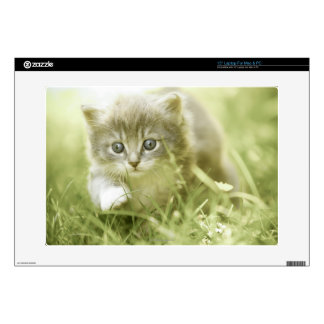 Kitten taking steps in the grass laptop skin