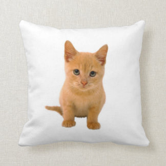 Kitten - Throw Pillow