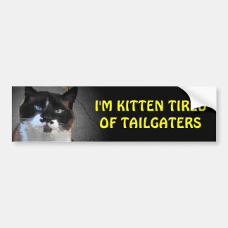 Kitten Tired of Tailgaters Cat Stand It Bumper Sticker