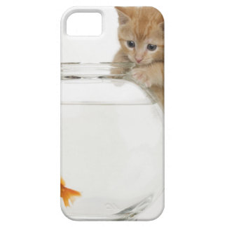 Kitten trying to get at a goldfish iPhone 5 cases