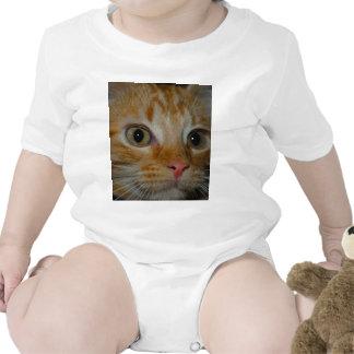 Kitten Rompers