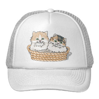 Kitten Tshirts and Gifts 155 Hats