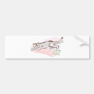 Kitten Tshirts and Gifts 185 Car Bumper Sticker