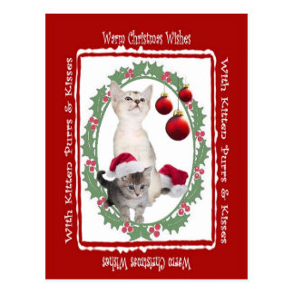 Kitten Warm Christmas Wishes Postcard