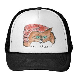 Kitten Wears a Knit Beanie Hat