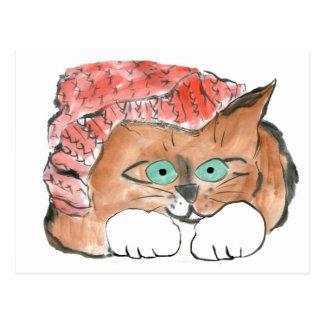 Kitten Wears a Knit Beanie Hat Postcard