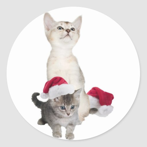 Kitten Wishes For A Purrfectly Wonderful Christmas Round Sticker