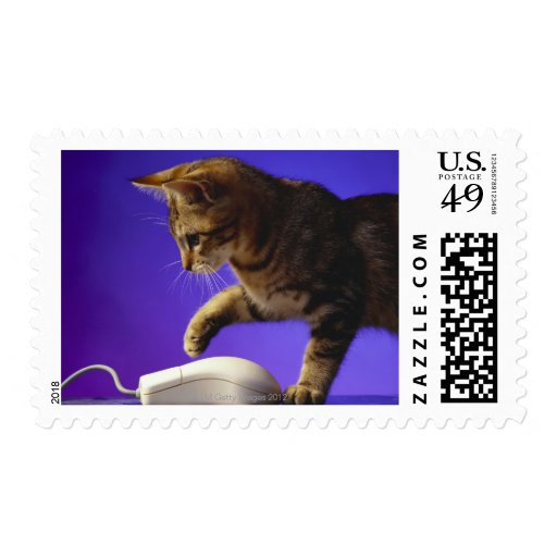 Kitten with computer mouse postage stamps