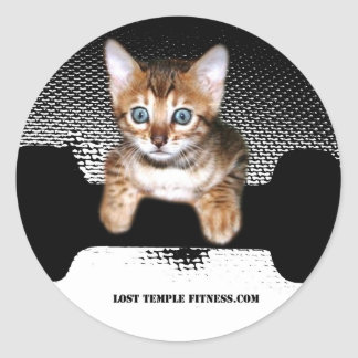 kitten with dumbbell, Black Classic Round Sticker