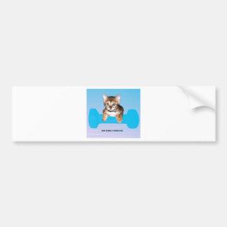 kitten with dumbbell blueJP.jpg Bumper Sticker