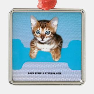kitten with dumbbell blueJP.jpg Square Metal Christmas Ornament
