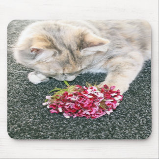 kitten with flowers mousepad
