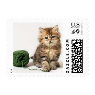 Kitten With Green Yarn Postage