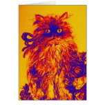 KITTEN WITH ROSES ,Orange Yellow.Blue Purple Cards
