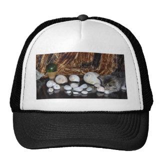 Kitten with Sea Shells Trucker Hat