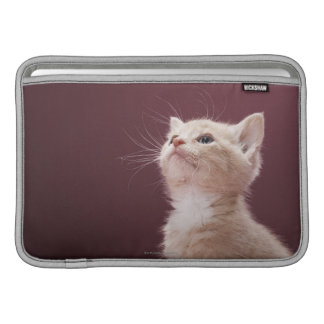Kitten with Whiskers Sleeve For MacBook Air