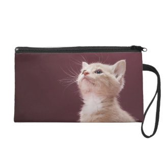 Kitten with Whiskers Wristlet Clutch
