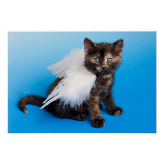 Kitten With Wings Poster