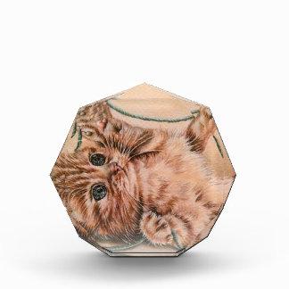 Kitten with Yarn drawing, pet cat art illustration Award