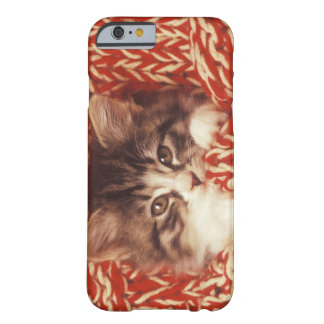 Kitten wrapped in woollen blanket, close-up barely there iPhone 6 case
