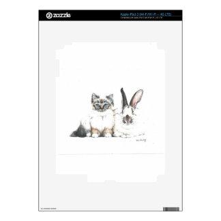 KittenBunny Skins For iPad 3
