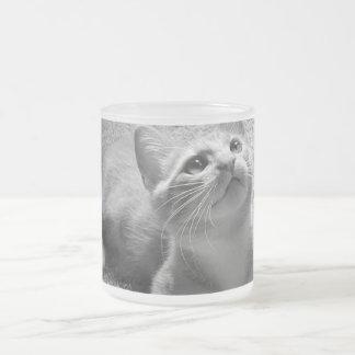 Kittenhood - taza