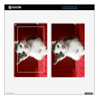 KittenNamed Awesome Skin For Kindle Fire