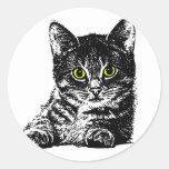 Kittens 1 stickers