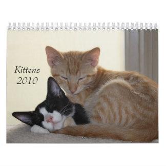 Kittens 2010 Calendar