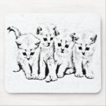 Kittens 2 mouse pad