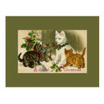 Kittens and Snowman Cat Post Cards