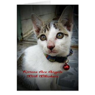 Kittens Are Angels With Whiskers Card
