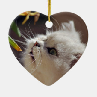 Kittens are nature lovers ceramic ornament