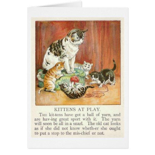 Kittens at play card