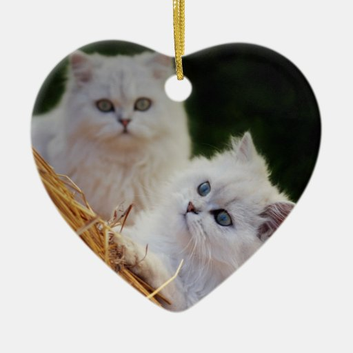 Kittens come play christmas ornament