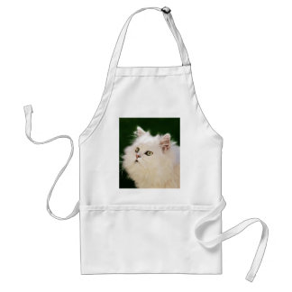 Kittens fascination adult apron